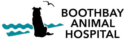 boothbay-animal-hospital-logo